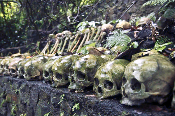 See All The Skulls In Trunyan Village Bali